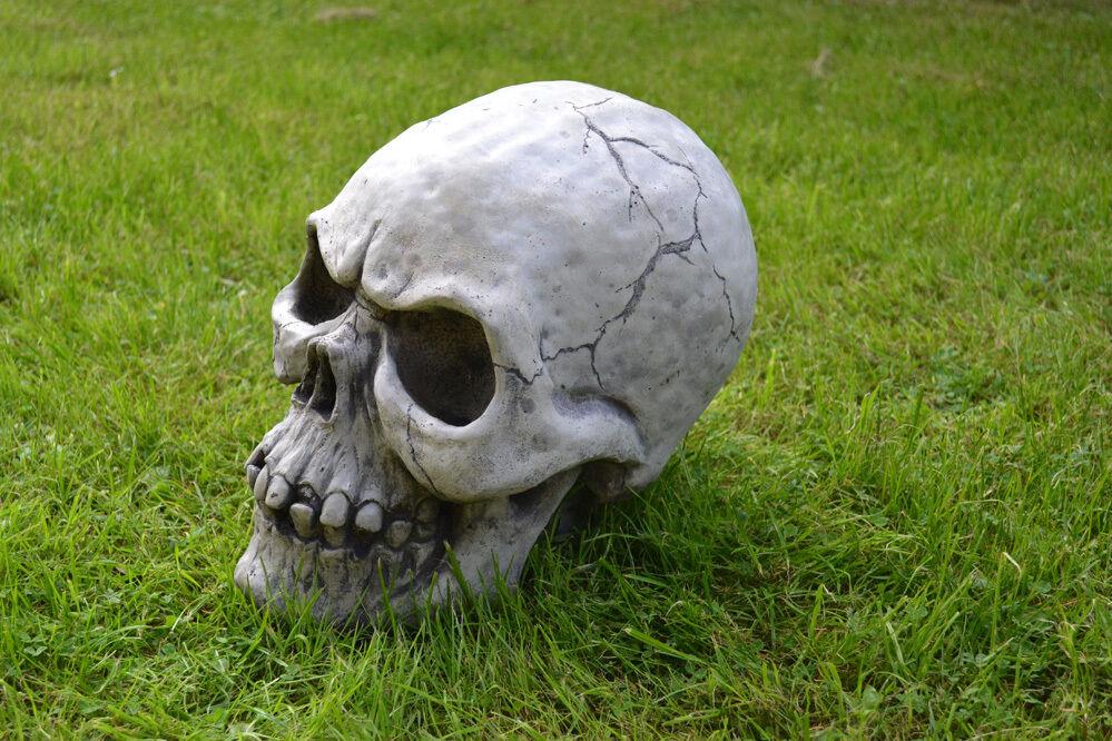 Riesiger Totenkopf -  Schädel - Totenschädel - Skull aus Steinguss