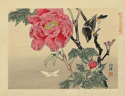 Japanese Print Reproductions: Bird watching a butterfly - Fine Art Print