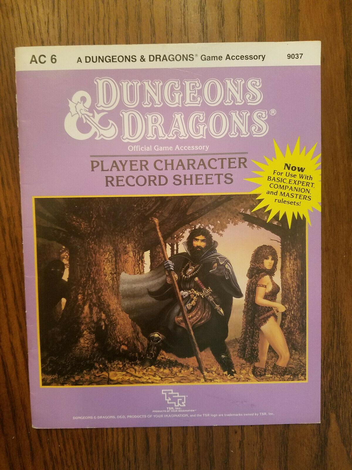 Dungeons Dragons, Player Chracter Record Sheets, AC 6, gioco Accessory, TSR