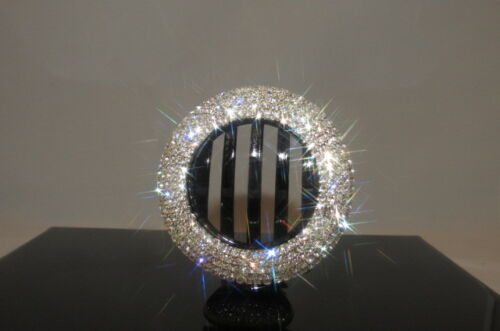 Brand New Gorgeous Hair  Clip with Shinny Rhinestone Jewelry Accessories