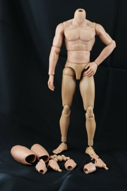 1/6 Male Narrow Shoulder Nude Body Action Figure Without