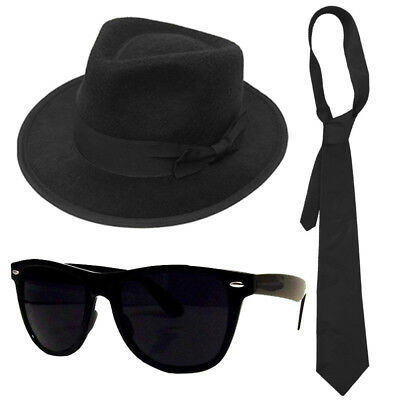 Blue Brothers Hat Glasses Plain Tie Sideburns 1980's Fancy Dress Costume Set