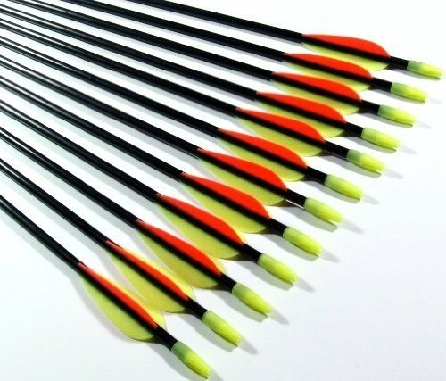 10 Archery Fibreglass Arrows 26 or 32inch blunt tip Youth arrows training arrows