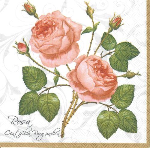 -17 elegante Vintage Rosa Rosa 4 Solo Papel Decoupage Servilletas