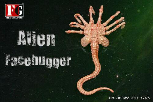 1//6 Predator Alien Facehugger Model Fire Girl Toys FG028 F 12/'/' Action Figure
