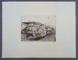 Horst-Janssen-Toter-Vogel-Radierung-1979-handsigniert-und-datiert