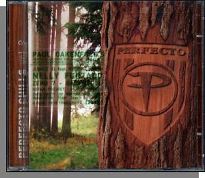 perfecto chills vol 2 2004 new dance music double cd 20 v a