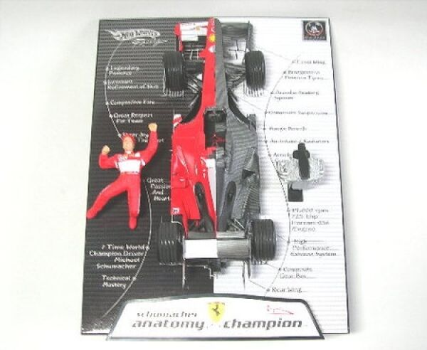 Anatomy Of Champion-Ms Private Collection