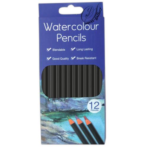 Artistes Crayons Art Croquis Water Colour Crayons Pack de 12 - 1468