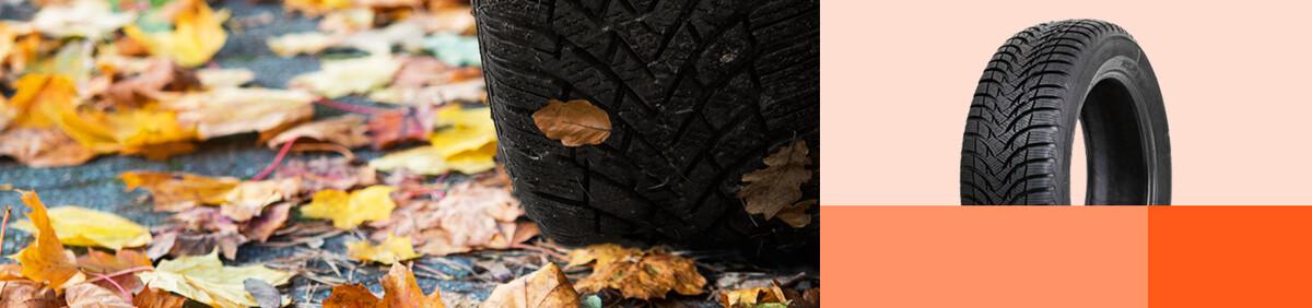 Aktion ansehen Top Winter- & Ganzjahresreifen Mit den richtigen Reifen durch den Winter