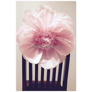 Details About Large Paper Peonies X 5 Bulk Tissue Paper Flowers Wall Decorations