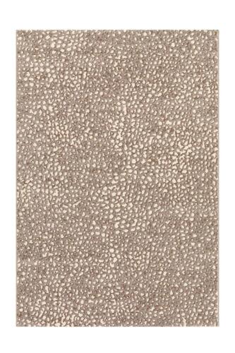 Teppich Wohnzimmer Kurzflorteppich Mit Modernem Design Creme 80x150cm