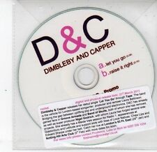 (DS283) Dimbleby & Capper, Let You Go / Raise It Right - 2011 DJ CD