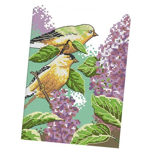 Stickpackung Stickbild Stickvorlage Kreuzstich Set Vögel Muster