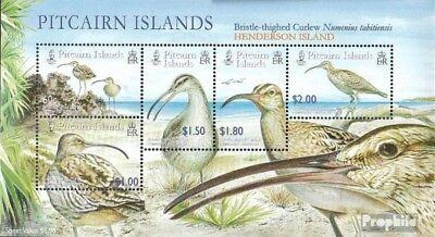 Stamps Selfless Pitcairn Block41 Mint Never Hinged Mnh 2005 Borstenbrachvögel