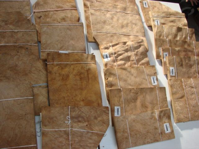 Bur Chestnut Veneer     large lot         35 sq. meters