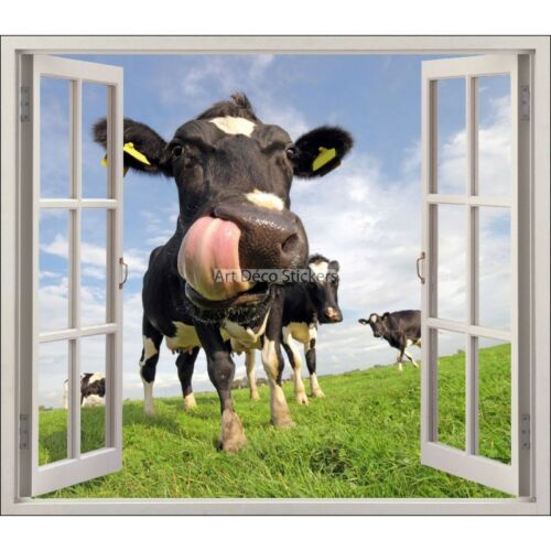 Sticker fenêtre trompe l/'oeil Vache réf 5476 5476