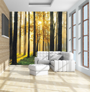 Details About 3D Morning Scene In The Forest Self Adhesive Wallpaper  Bedroom Wall Murals Decor