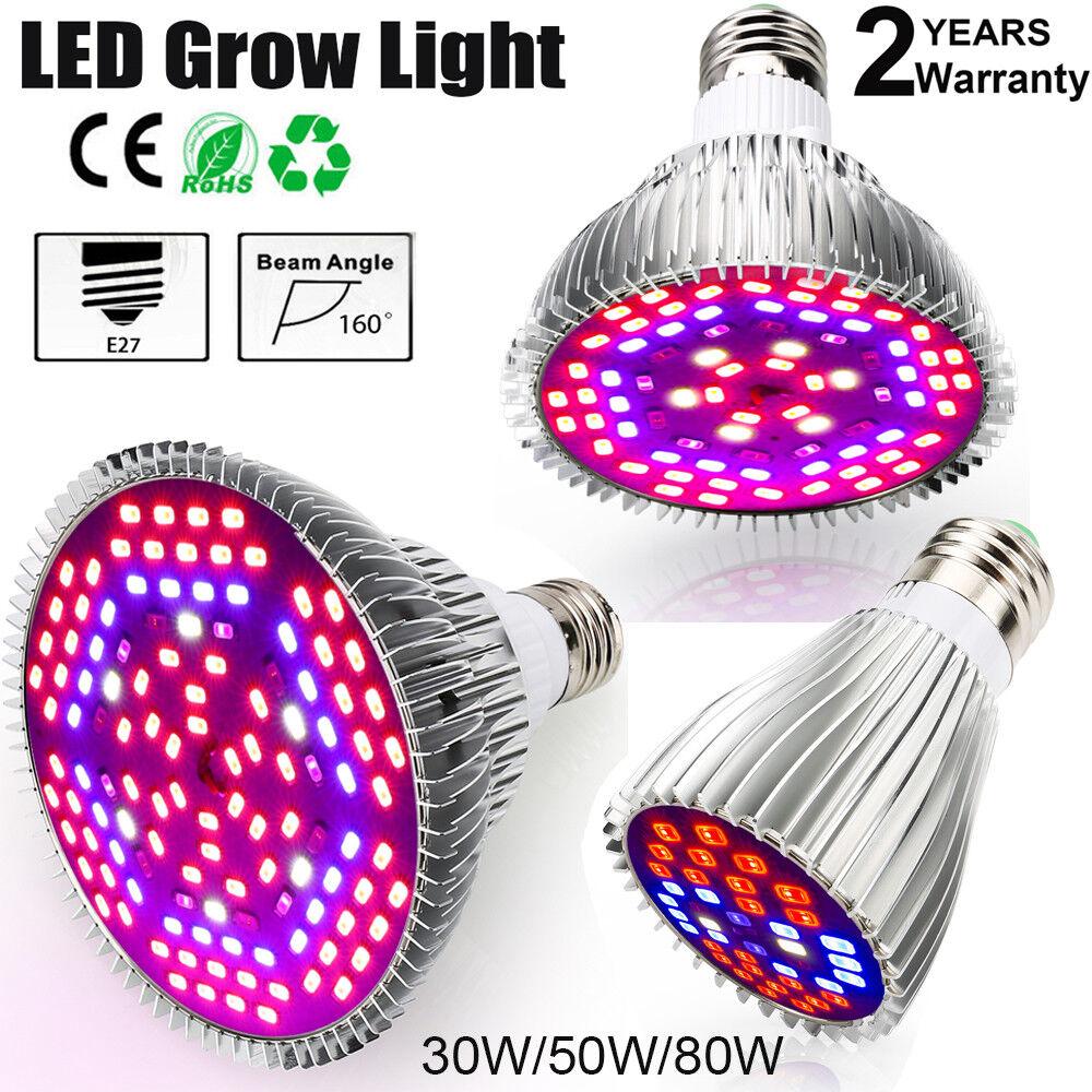 LED Grow Light 30W 50W 80W Vollspektrum Growing Lanp Für Hydrokultur Gewächshaus