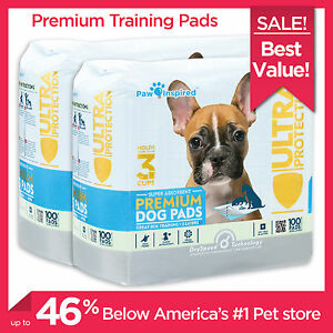 Puppy-Pads-200-300-400ct-Puppy-Training-Wee-Wee-Dog-Pee-Underpads-Paw-Inspired