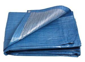 LEVIOR - PE Plane   2x2/70 blau/silber