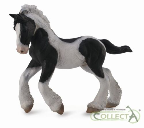 Collecta 88770 Gypsy Foal Black and White 4 5//16in Pferdewelt