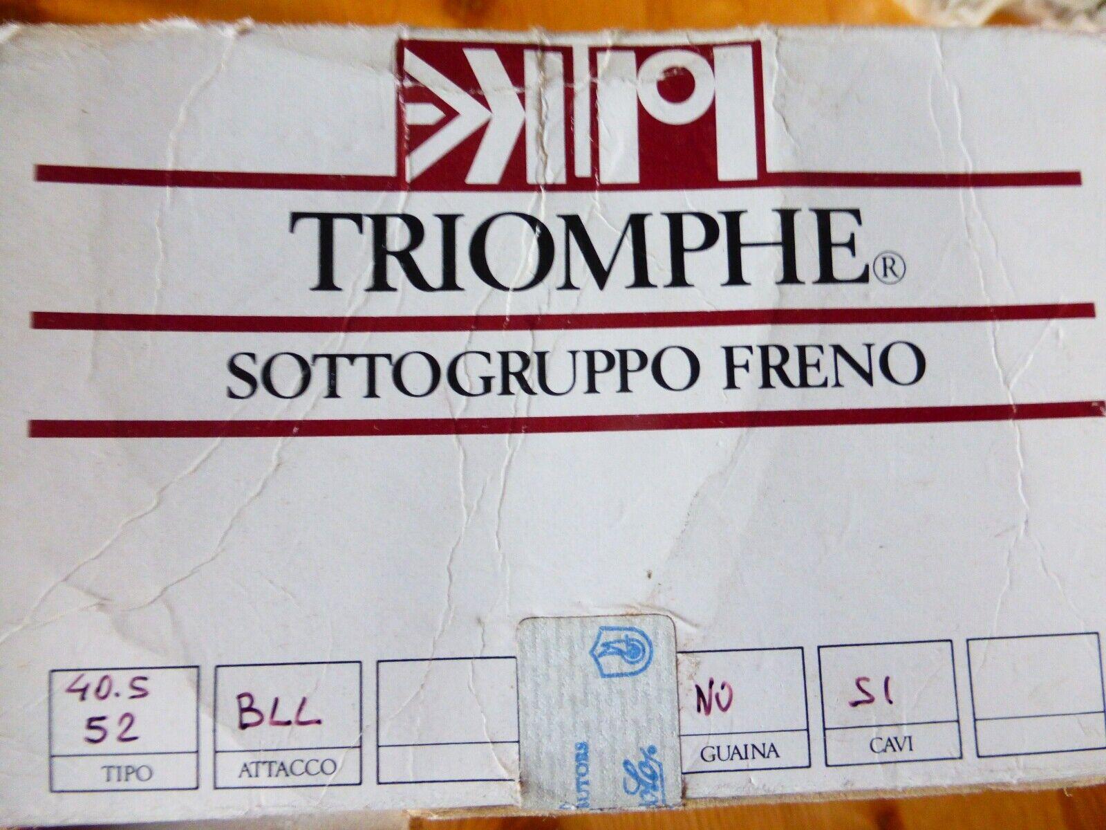 CAMPAGNOLO TRIOMPHE BRAAKE CABLES EN BRACHTLERS MET CABLES NOS NIB