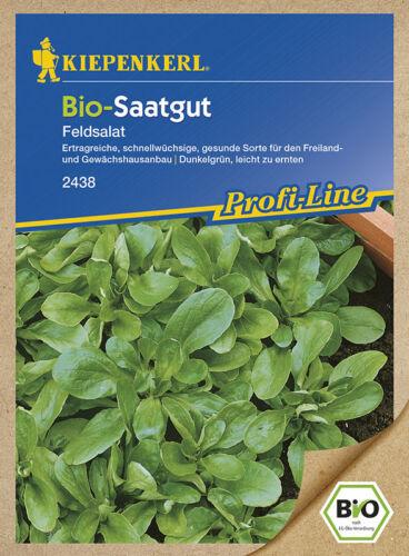 MHD 01//21 BIO-Saatgut Kiepenkerl 2438 Vit Salat Feldsalat