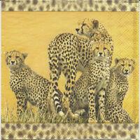 3 Servietten Napkins Afrika Leopard Leopardenmuster Leopardenfamilie Safari 42