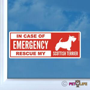 In Case of Emergency Rescue My Scottish Terrier Sticker Vinyl - dog v2 scottie