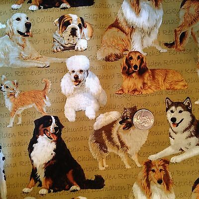 Pure Breed DOGS with Names Gold Dog Novelty Quilt Fabric Last Fat Quarter FQ FQs