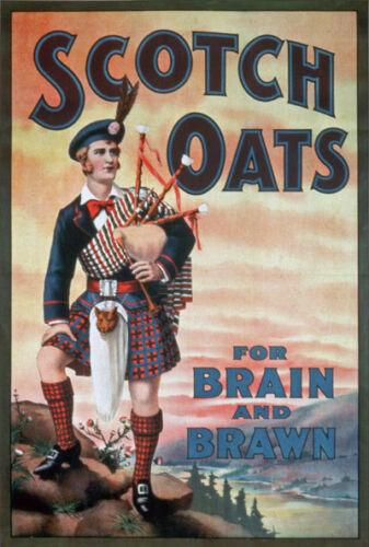 "AD39 Vintage Scotch Oats Porridge Advertising Poster A3 17/""x12/"" Re-print"