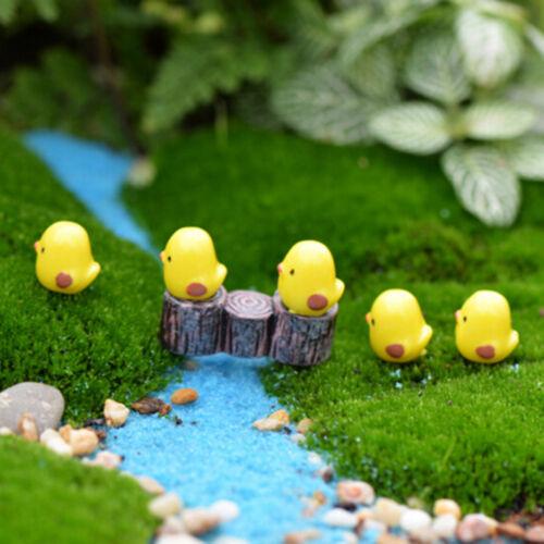5Pcs Mini Yellow Chicken Micro Landscape Fairy Garden Decor Dollhouse Toy DIY BH