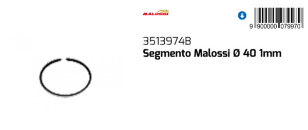 3513974b Segmento Malossi Ø40x1 Malaguti F12 Phantom 50 Air Eu2-2.3 2003 2004 En Digestion Helping