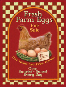 Fresh-Farm-Eggs-For-Sale-Metal-Wall-Sign-3-sizes-Small-Large-and-Jumbo