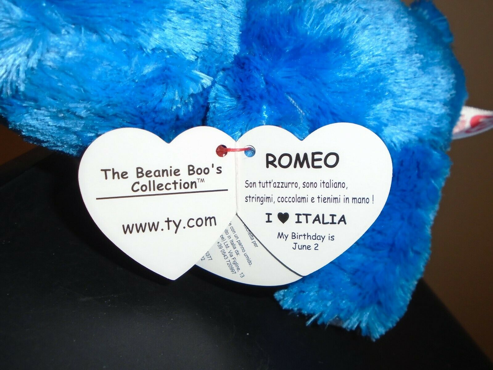 Ty Beanie Boos Set ~ ROMEO the Bear Italy Exclusive NEW /& RARE ODDITY IN HAND