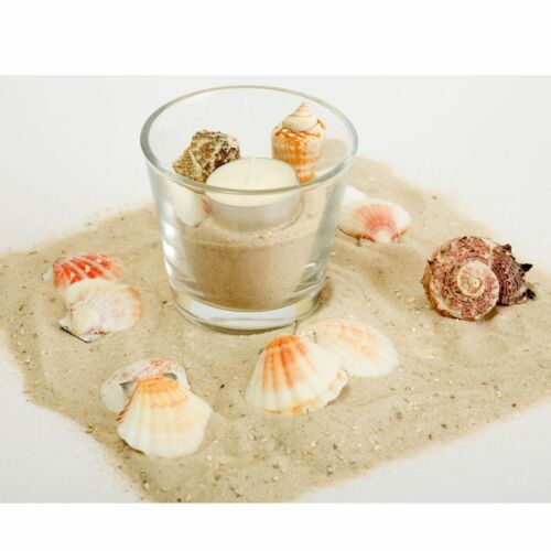 12 x lumignons verres windlichter H 7 cm lumignons Support dessert Verres Décoration De Table