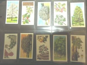 1966-Brooke-Bond-Tea-TREES-IN-BRITAIN-flowers-leaves-Trade-card-set-50-cards