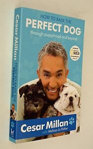 How-to-Raise-the-New-Perfect-Dog-by-Cesar-Millan-The-Dog-Whisperer-Training-New