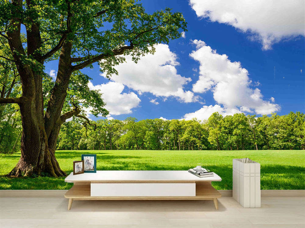 Promising Deep Sky 3D Full Wall Mural Photo Wallpaper Printing Home Kids Decor