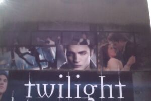 HOLLYWOOD-CINEMA-TWILIGHT-LE-TOURNAGE-MAKING-F-DU-FILM-IN-FRENCH-164-PAGES