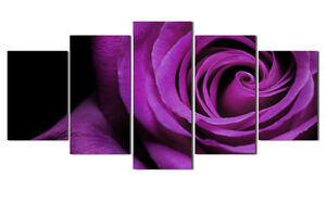 1-set-Classical-Foral-Flower-Beauty-of-Purple-Rose-canvas-picture-print-painting