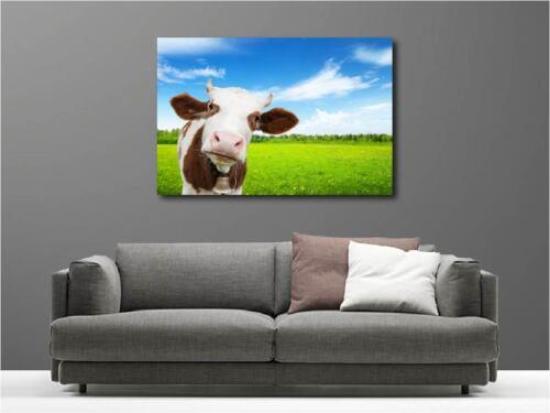 Tableaux toiles déco en kit Vache réf 93064210