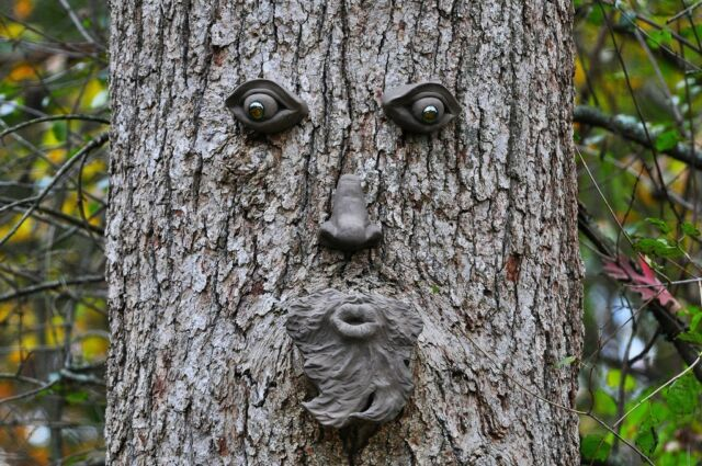 Tree Face Home Decor Canvas Print A4 Size (210 x 297mm)