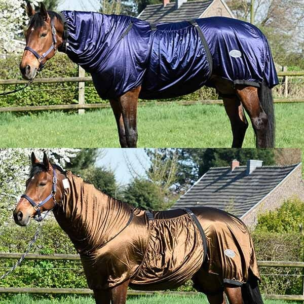 Pferdo 24 daselfo ekzemerdecke Powerline Haiti Vers. colorei Mosche Protezione ekzemer