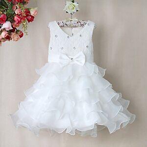 Princess Style Cupcake Daisy Sparkle Flower Girl Dress Bridesmaid