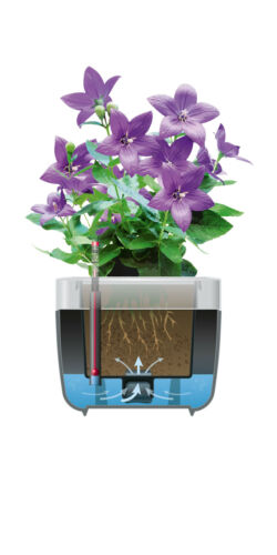 Emsa myBOX Blumenkasten Blumenkübel 35 cm anhrazit//alu Pflanzkübel Pflanzkasten