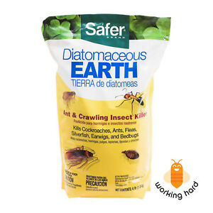 DIATOMACEOUS-EARTH-CRAWLING-INSECT-KILLER-4-Lbs-Pest-Control-Powder-Bug-Flea-Ant