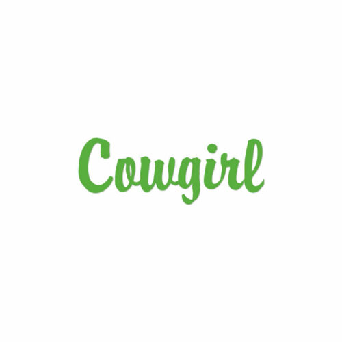 ebn1577 Multiple Color /& Sizes Vinyl Decal Sticker Cowgirl