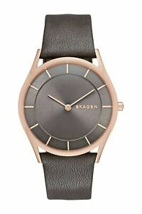Skagen HOLST Women's Watch, Grey Dial Grey Leather Watch NIB No Tags SKW2346